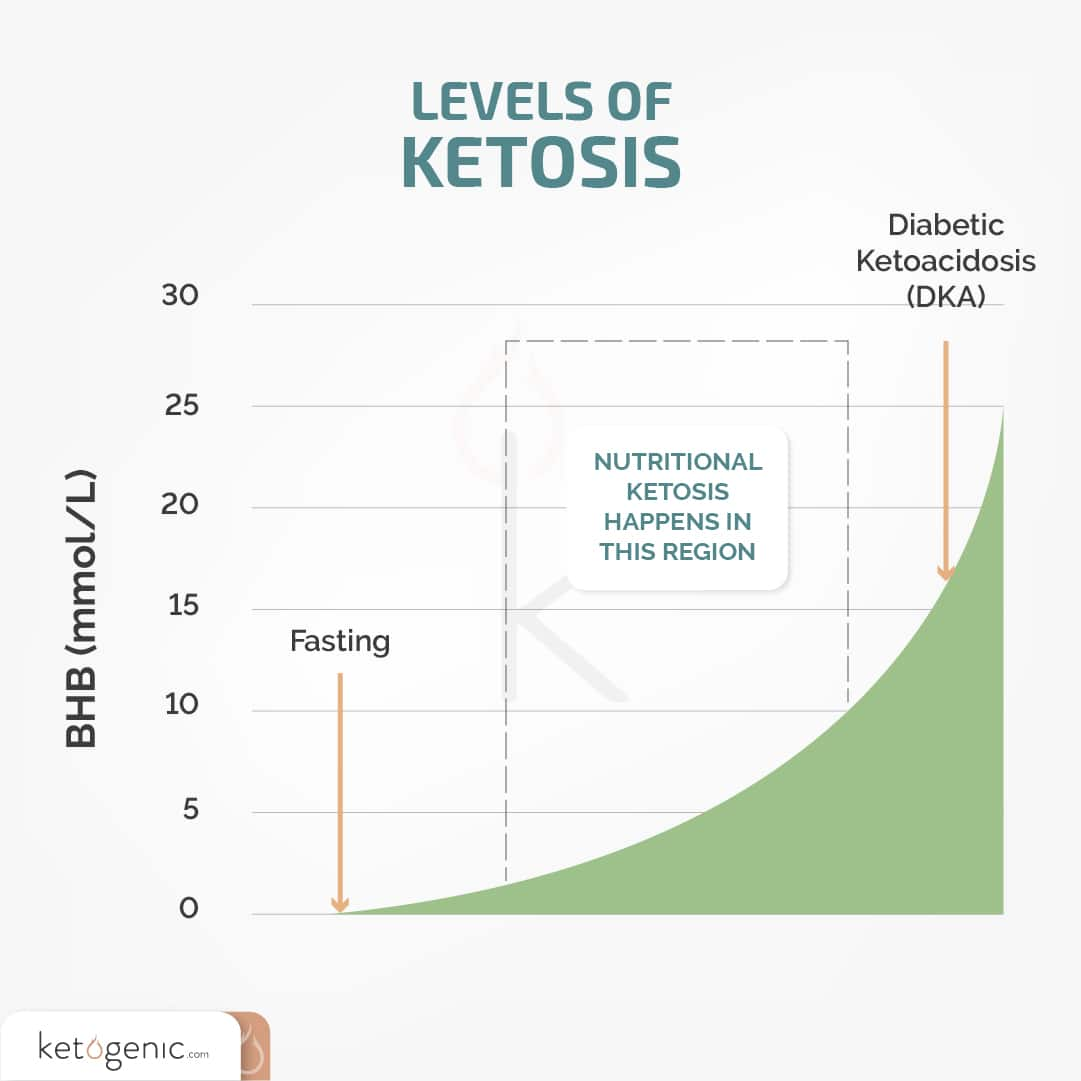 levels of ketosis on the keto diet for beginners