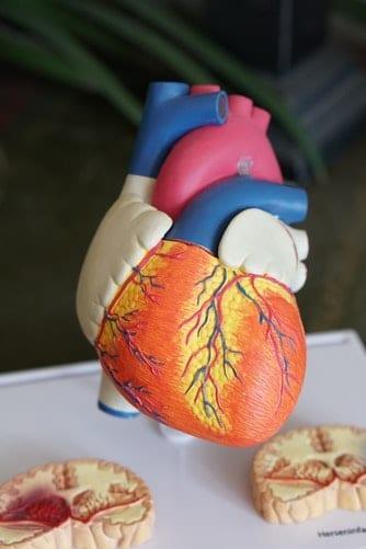 ketones and heart health