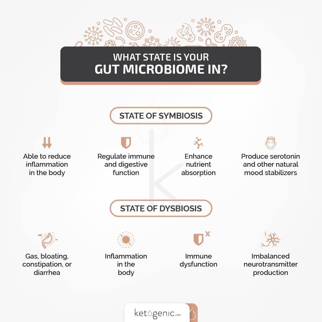 GI gut microbiome health