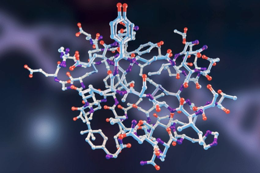 Insulin: Structure, Signaling, and Stability
