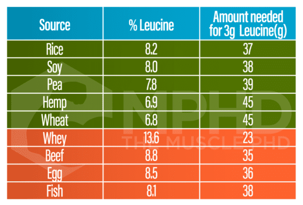 plant vs animal protein leucine chart