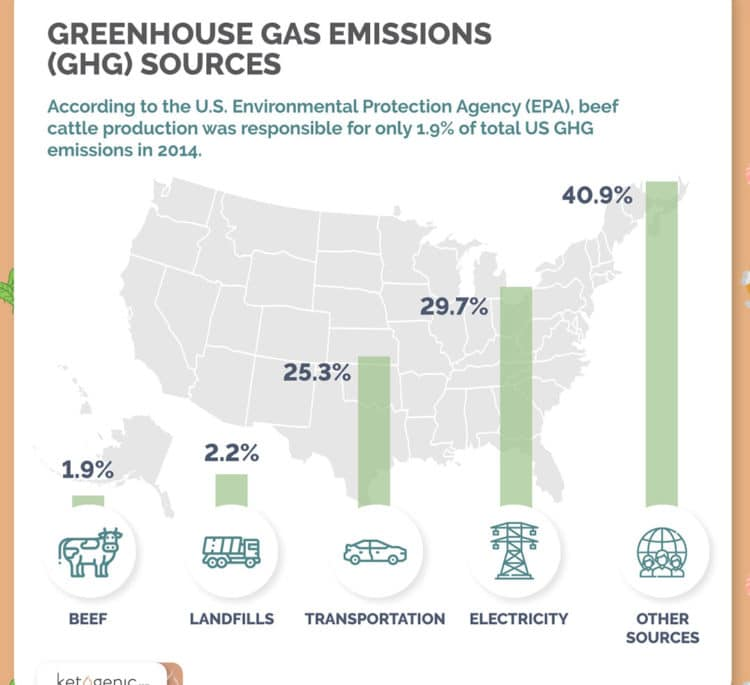 Keto and Greenhouse Gas Emissions