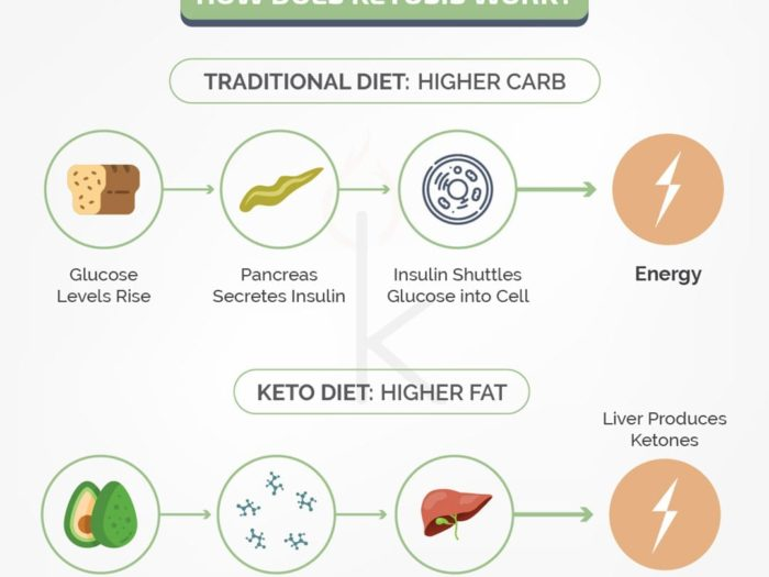 How Does Ketosis Work