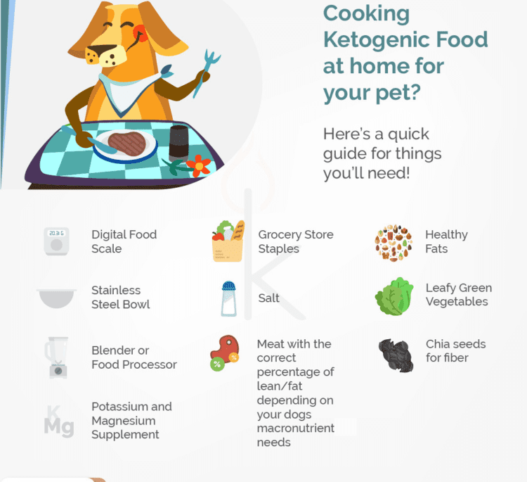 Keto For Dogs: How to Cook for Your Pup