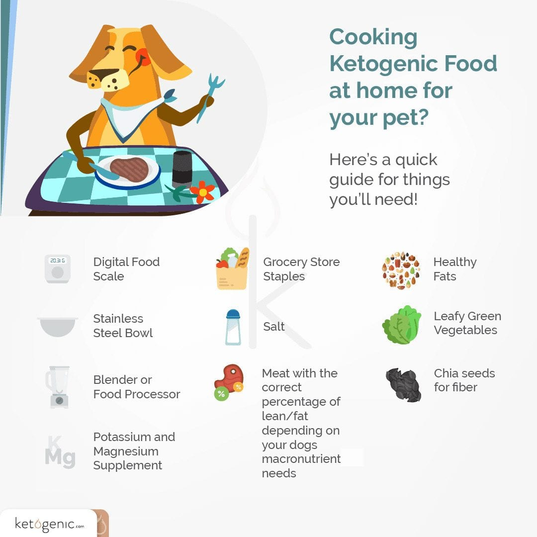 ketogenic diet for dogs