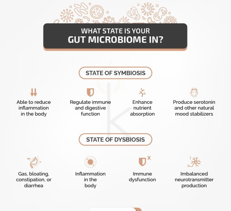 How's Your Gut Microbiome?