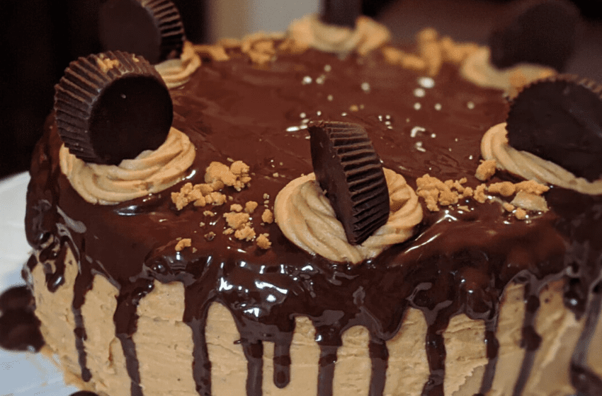 keto chocolate peanut butter cake with peanut butter cups