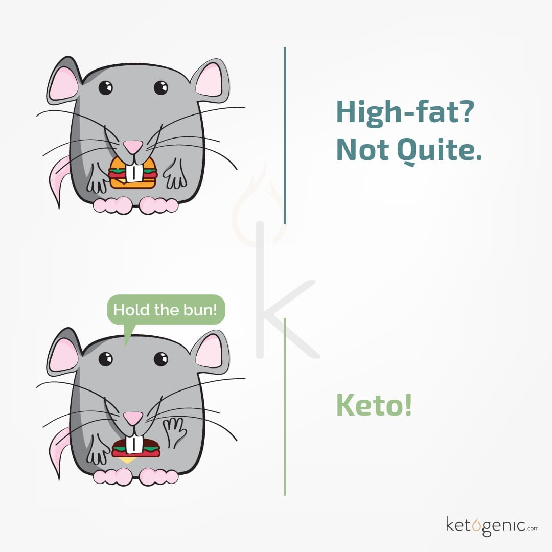 Is the Keto Diet Bad?