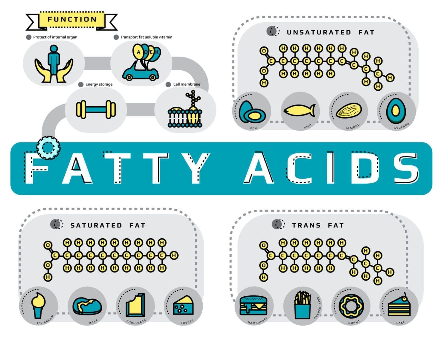 fatty acids trans fats
