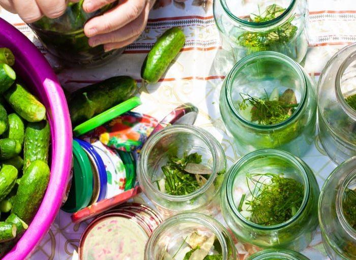 homemade keto pickles