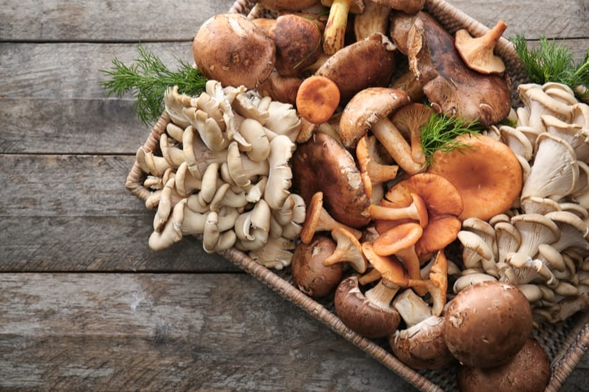 mushrooms on keto