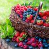 keto fruit recipes