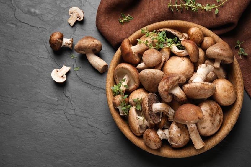 keto mushroom recipes