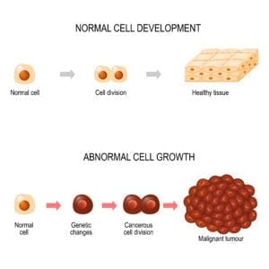 cancer cells growth and cancer immunotherapy