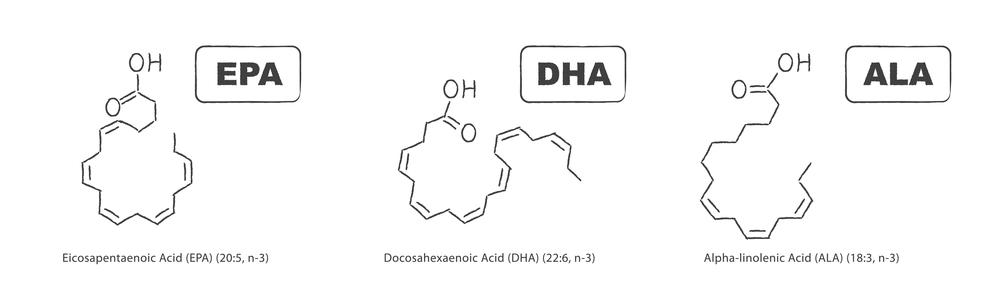 omega 3 fatty acids epa dha ala