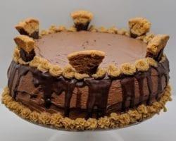 Keto Peanut Butter Chocolate Protein Cake